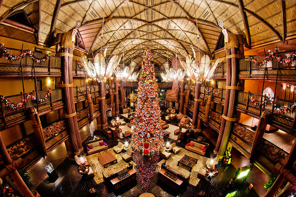 Jiko Animal Kingdom Lodge Disney World Dining Disney Tourist Blog