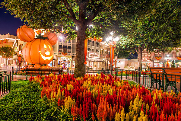 tamron 24 70mm f28 vc lens review disney tourist blog - When Does Disneyland Decorate For Halloween