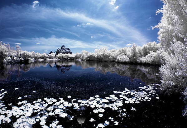 Expedition Everest at Disney's Animal Kingdom shot with a Nikon D70 infrared converted camera. Looks like it snowed in the mountains!More infrared Disney photos: http://www.disneytouristblog.com/photos-of-snow-in-disney-infrared-photography-disneyland-walt-disney-world/
