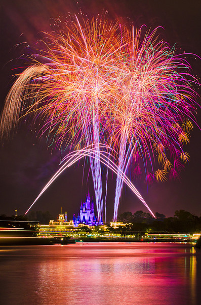 Walt Disney World ResortMagic Kingdom Wishes! FireworksThe Transportation and Ticket Center (TTC) at Walt Disney World offers one of the best viewing places of the Wishes! fireworks show. The bursts appear larger than life here, and best of all, you can watch the fireworks for FREE here!