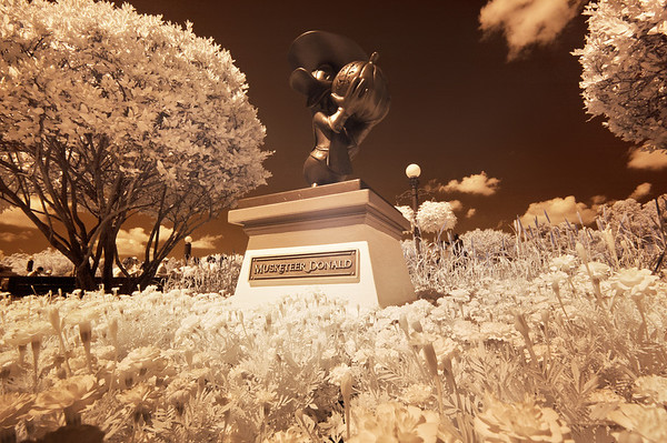An infrared photo of